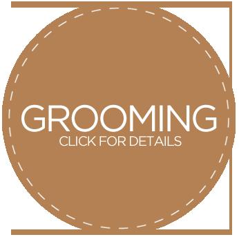 grooming_346x343